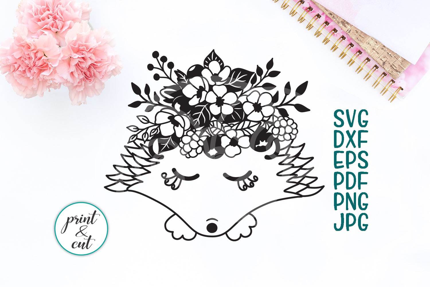 Download Free Hedgehog Graphic By Cornelia Creative Fabrica for Cricut Explore, Silhouette and other cutting machines.