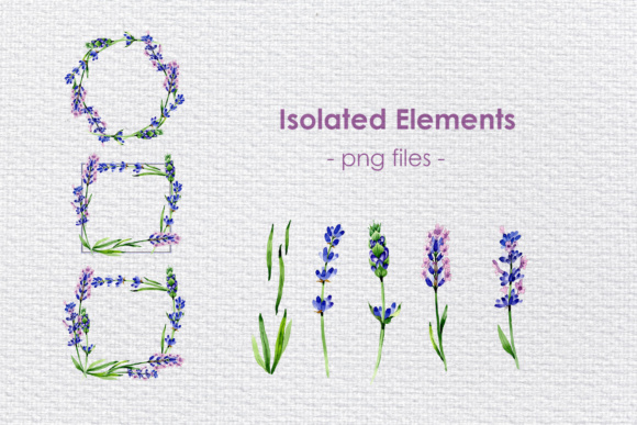 Print on Demand: Holiday Purple Lavender Flowers PNG Watercolor Set Graphic Illustrations By MyStocks - Image 3