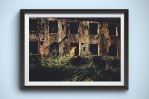Lion in a Stone Hotel Graphic Animals By Kerupukart Production