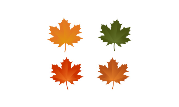 Maple Leaf, Auntum Logo Graphic By 2qnah Image 1