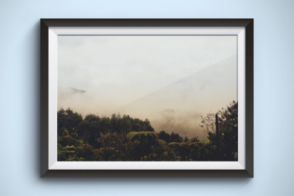 Misty but Bright Forest Graphic Nature By Kerupukart Production