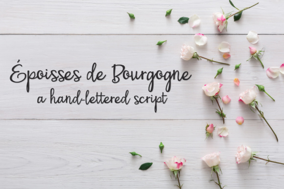 Print on Demand: PN Époisses De Bourgogne Script & Handwritten Font By Illustration Ink