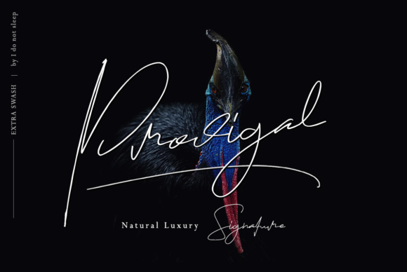 Print on Demand: Prodigal Script & Handwritten Font By I Do Not Sleep