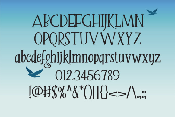 Print on Demand: Seagully Serif Font By Illustration Ink - Image 3