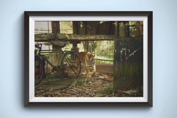 Tiger Tired After Cycling Graphic Animals By Kerupukart Production
