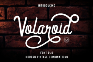 Volaroid Duo Font By Din Studio