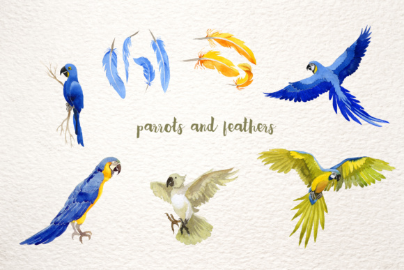 Download Free Watercolor Cool Parrot Bird Set Graphic By Mystocks Creative for Cricut Explore, Silhouette and other cutting machines.