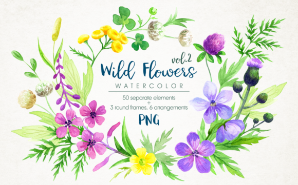 Print on Demand: Wild Flowers Watercolor Set. Graphic Illustrations By Olga Belova