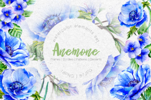 Wonderful Blue Anemone PNG Watercolor Set   Graphic By MyStocks