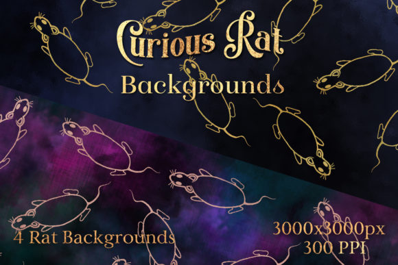 Print on Demand: Curious Rat Backgrounds - 4 Image Set Graphic Backgrounds By SapphireXDesigns