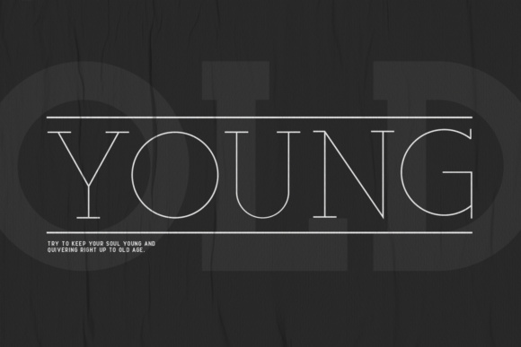 Print on Demand: Ace Family Serif Font By Factory738 - Image 4