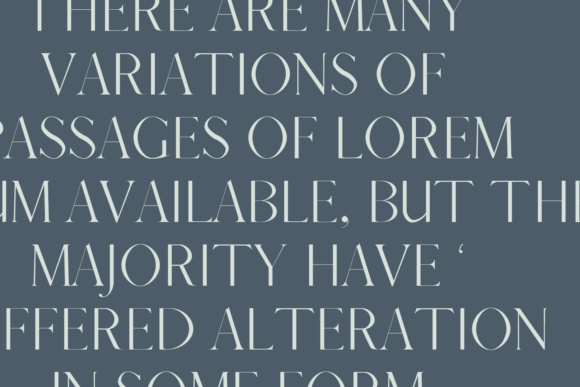 Print on Demand: Afrah Family Serif Font By Creative Tacos - Image 9