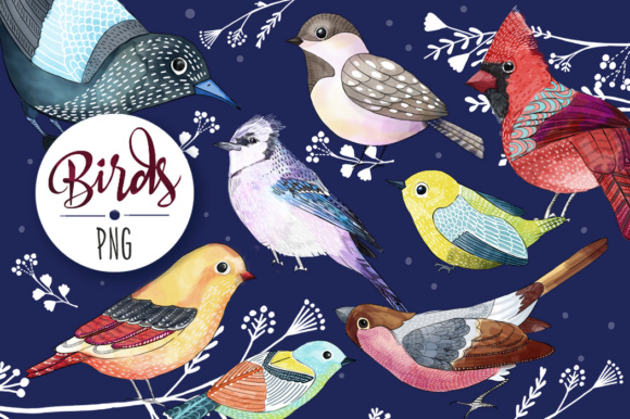 Birds (watercolor Elements) Graphic Illustrations By sto-va