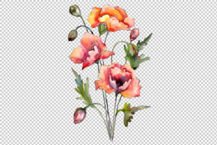 Bouquet of Red Poppies PNG Watercolor Set Graphic By MyStocks