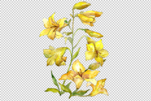 Download Free Bouquet Of Yellow Lilies Watercolor Flower Set Graphic By for Cricut Explore, Silhouette and other cutting machines.