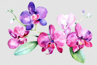 Branch of Purple Orchids PNG Watercolor Set Graphic By MyStocks