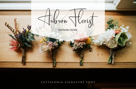 Cattalonia Font By Pen Culture Image 4