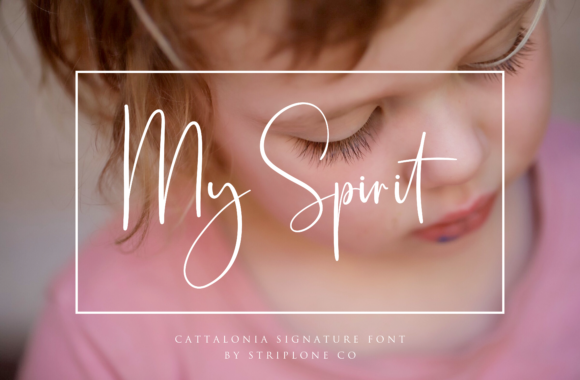 Cattalonia Font By Pen Culture Image 8