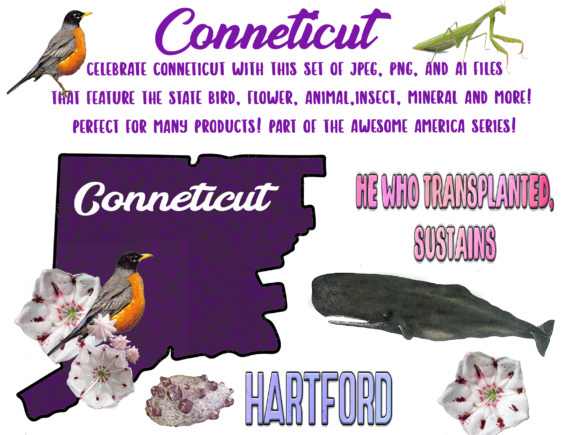 Connecticut - Awesome America Series Graphic Objects By BellaUniquePrintique