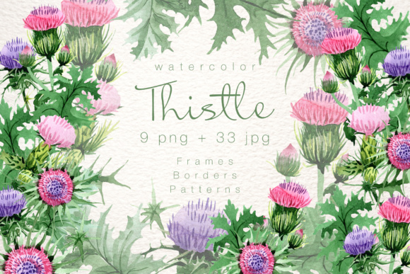 Print on Demand: Cool Thistle Watercolor Set Graphic Illustrations By MyStocks