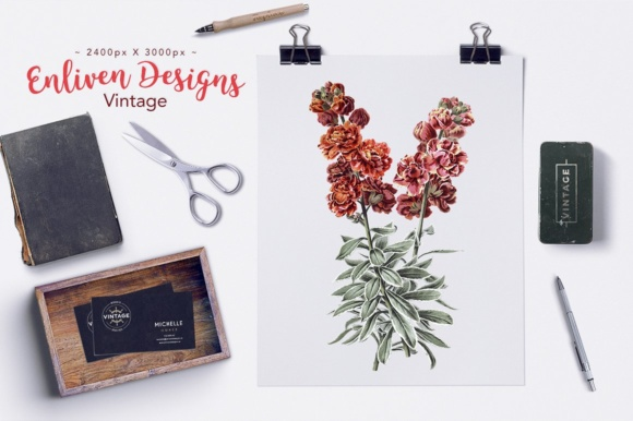 Double Wallflower Clover Watercolor Graphic Illustrations By Enliven Designs - Image 2