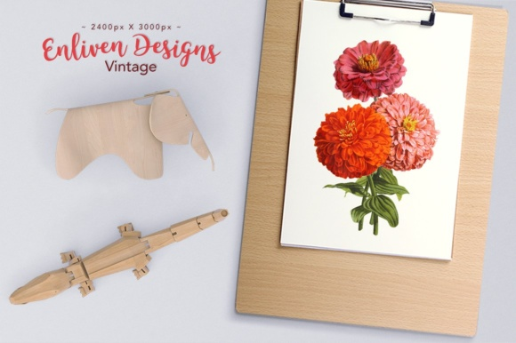 Double Zinnia Bouquet Watercolor Graphic Illustrations By Enliven Designs - Image 2