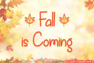 Fall is Coming Font By Misti