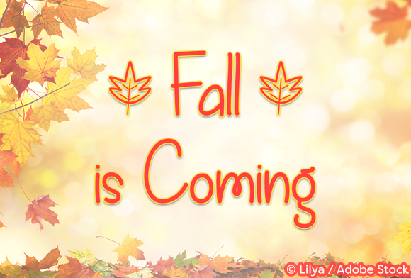 Print on Demand: Fall is Coming Script & Handwritten Font By Misti