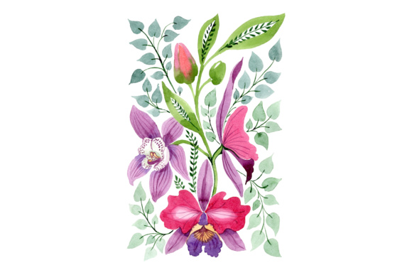 Floral Ornament of Orchid Flowers PNG Set