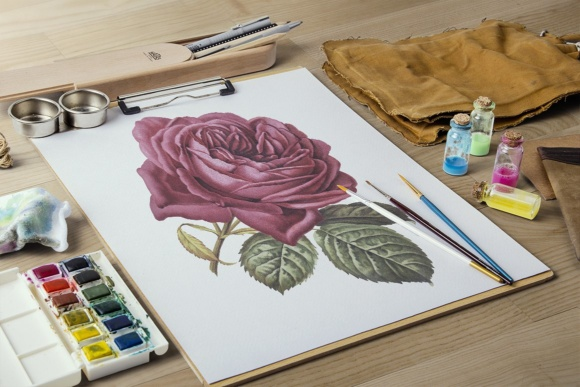 French Rose Watercolor Graphic Illustrations By Enliven Designs - Image 6