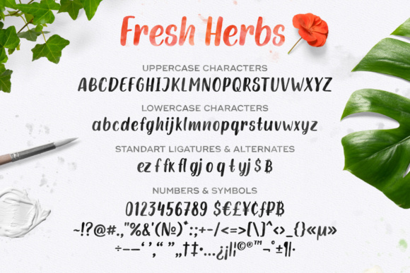 Fresh Herbs Font By Yurlick Image 6