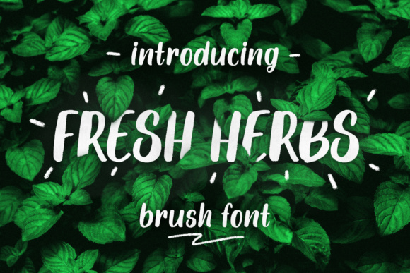 Fresh Herbs Font By Yurlick Image 1