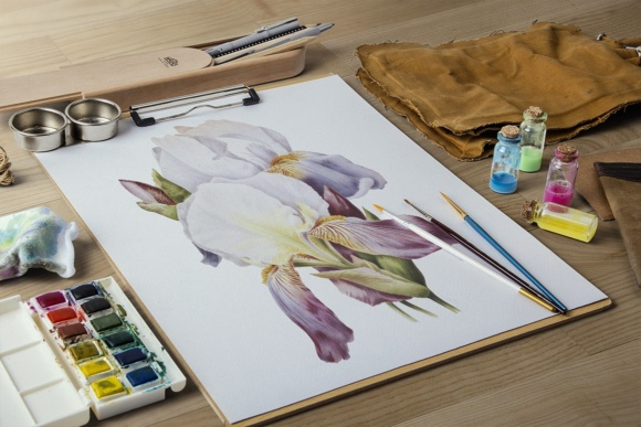 German Iris Watercolor Graphic Illustrations By Enliven Designs - Image 7