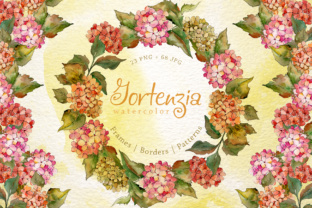 Gortenzia PNG Watercolor Flower Set Graphic By MyStocks