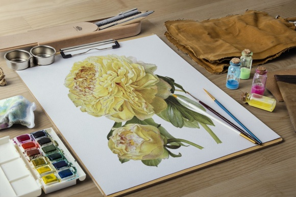 Hybrid Delavay Peonies Graphic Illustrations By Enliven Designs - Image 7