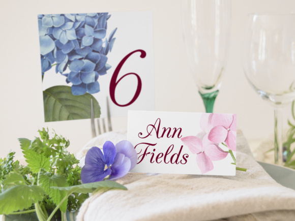 Hydrangea Hortensis Graphic Illustrations By Enliven Designs - Image 3