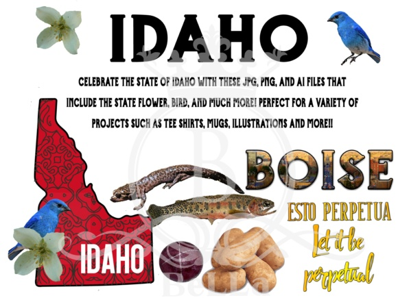 Idaho-Awesome America Series Graphic Illustrations By BellaUniquePrintique