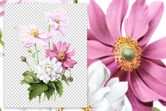 Japanese Anemone Watercolor Graphic Item