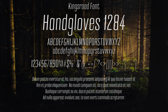 Print on Demand: Kingsroad Serif Font By Eldamar Studio Fonts - Image 2