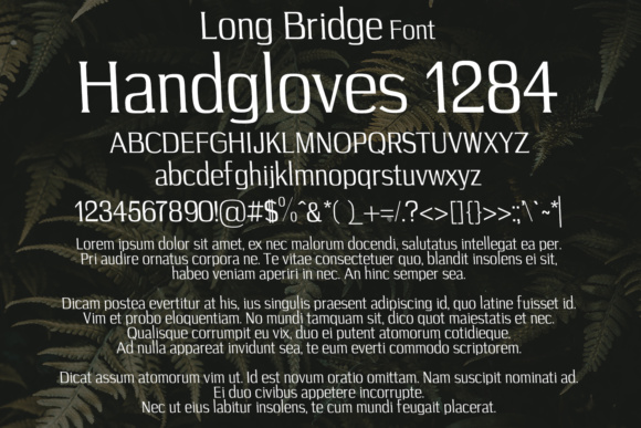 Print on Demand: Long Bridge Serif Font By Eldamar Studio Fonts - Image 2