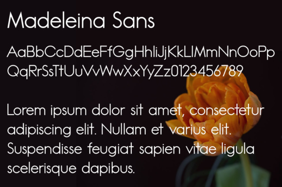 Print on Demand: Madeleina Sans Serif Font By Chequered Ink - Image 2