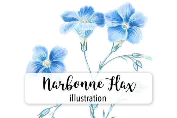Narbonne Flax Watercolor Graphic By Enliven Designs