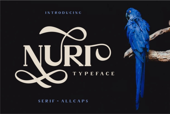 Print on Demand: Nuri Display Font By putracetol