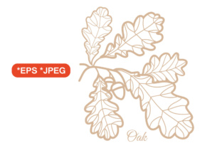 Print on Demand: Oak Leaves. Outline Drawing Graphic Illustrations By zoyali