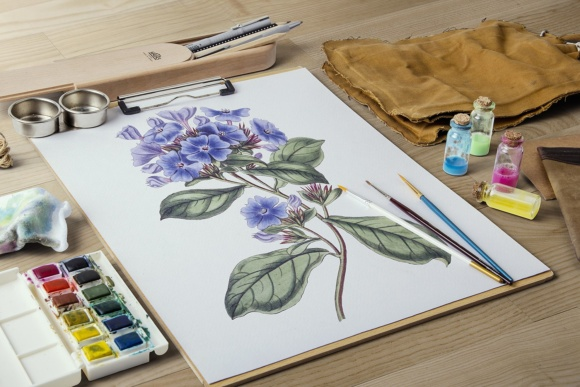 Plumbago Watercolor Graphic Illustrations By Enliven Designs - Image 4