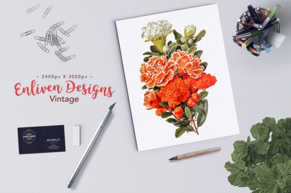 Pomegranate and Grenadier Watercolor Flowers Graphic Download