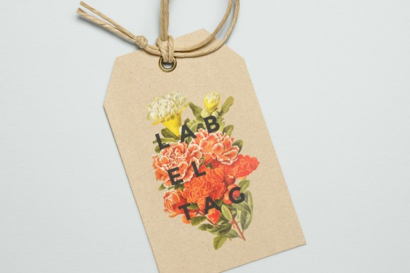 Pomegranate and Grenadier Watercolor Flowers Graphic Image