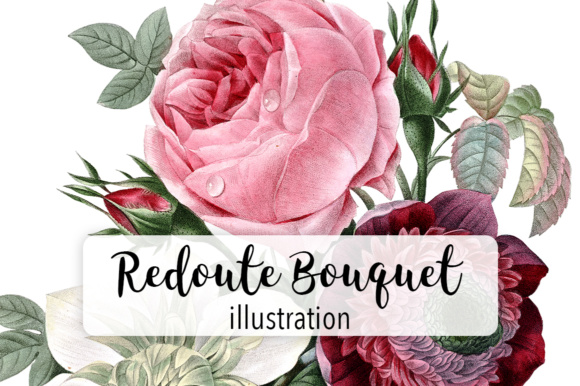 Redoute Watercolor Flower Bouquet Graphic Illustrations By Enliven Designs