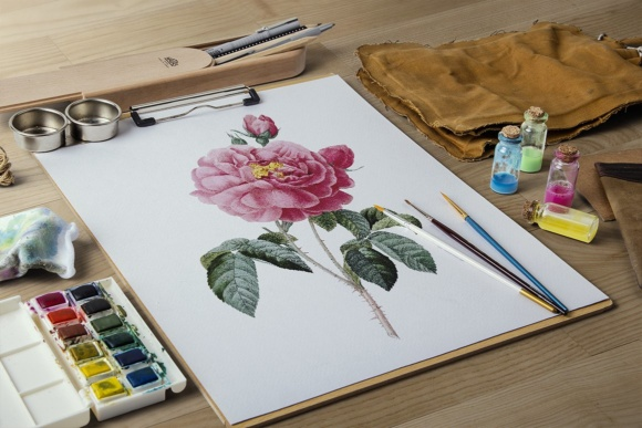 Rose of Orleans Watercolor Graphic Illustrations By Enliven Designs - Image 8