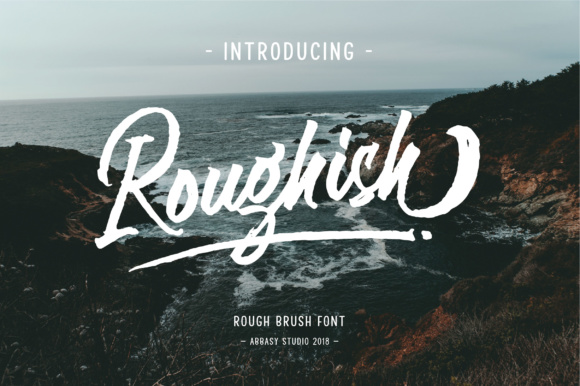 Roughish Script & Handwritten Font By abbasystudio